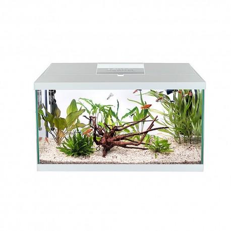 Rura PCV 25mm