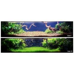 Tetra Algizit 10 tabletek
