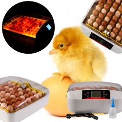 Zestaw filtracji przelewowej PRO ECO do 8000l
