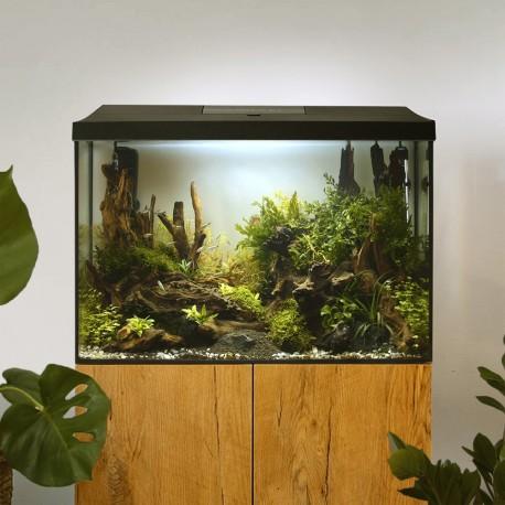Zoolek Capiforte 30ml