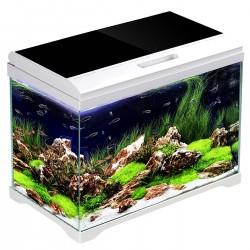 Złączka metalowa zaciskowa 1/4 cala GW 6mm