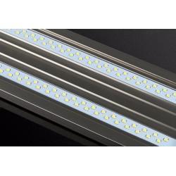 Bubble Magus ACS-200 automatyczny czyścik kubka odpieniacza