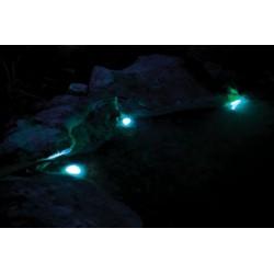 Bubble Magus ROCK SP-600 Impeller - wirnik igiełkowy