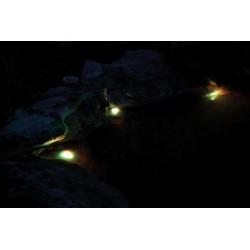 Bubble Magus WP-600 - pompa do filtrów