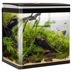 Tło z kory dębu korkowego do terrarium 20 x 30