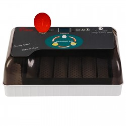 Komodo Crested Gecko Complete Diet - Tropical Friut & Insect 60g
