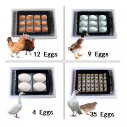 Komodo Crested Gecko Complete Diet - Watermelon & Nectar 60g
