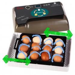 Komodo Jelly Pot Banana Jar - pokarm banan w żelu 60szt.