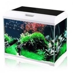 Komodo Nutri-Cal 75g - witaminy i wapno dla żółwi i jaszczurek