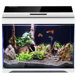 Komodo Premium Booster for Feeder Insects 75g