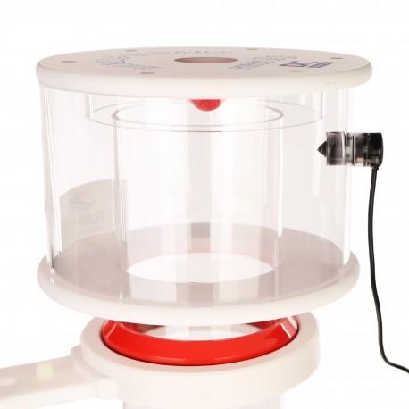 Repti-Zoo roślina sztuczna - Paproć Tropikalna