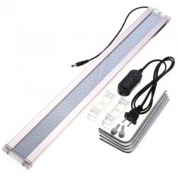 Silent Moss - Mech żywy porcja 10g