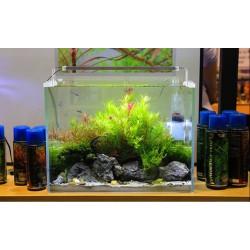 NEO Soil Shrimp 9l - podłoże do akwarium roślinnego