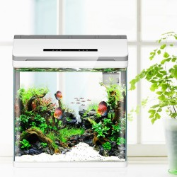 Secret Live Moss - Mech żywy porcja 5g
