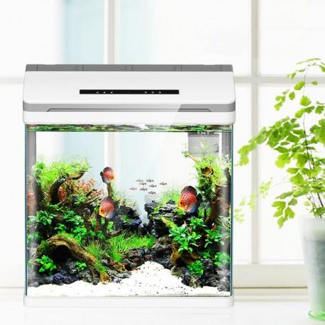 Secret Live Moss Light Green - Mech Żywy porcja 5g