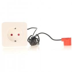 Yusee Roślina - Alternanthera Red 35cm