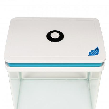 Secret Live Moss Lavender Violet - Mech Żywy porcja 5g