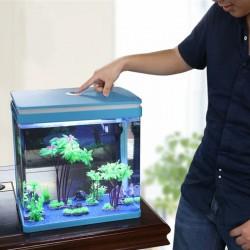 Roślina InVitro - Didiplis diandra
