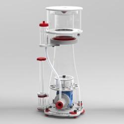 Aquaforest Color Up - pokarm naturalnie wybarwiający