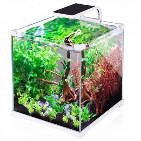 JBL Bio80 CO2 Eco - zestaw CO2