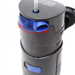 Eco Plant - Marsilea Quadrifolia - InVitro duży kubek