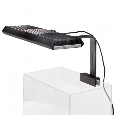 EXO TERRA Faunarium-Terrarium Large (37x22x24.5cm)