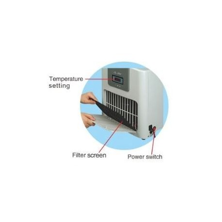 36W Świetlówka T8 Philips 865 6500k 120cm