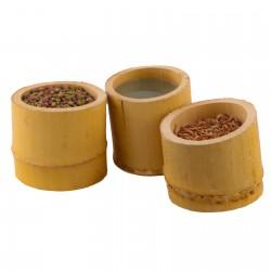 SunSun SmartPlant Aqua - Zestaw akwarium białe 3l
