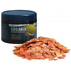 Bello Plant - Devil's Ivy Red - roślina XL do obrazów 3D